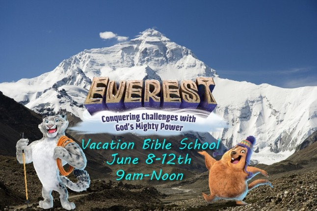 everest-vbs-2use