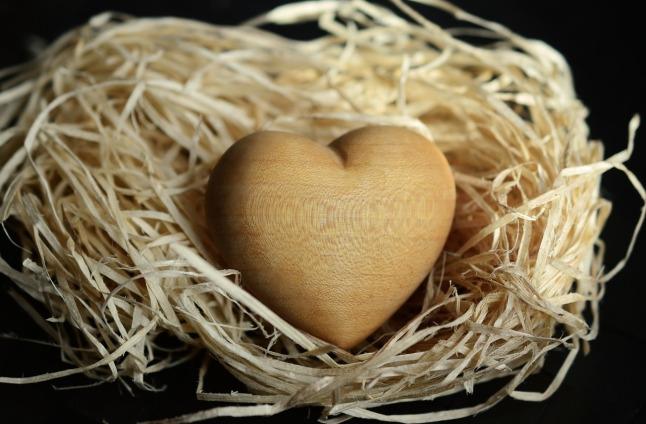 wood-wool-1186917_1280