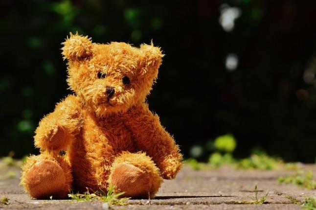 bear-1409127_1280